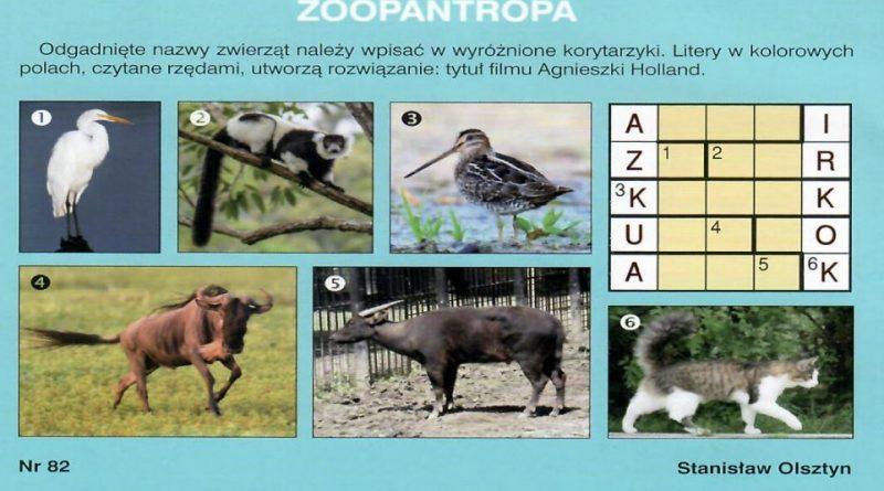 Zoopantropa - Rozrywka 2/2019 - Stanisław Olsztyn