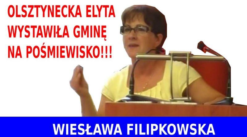Olsztynecka elyta - Wiesława Filipkowska - 18.06.18 r.