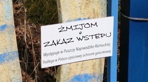 Żmijom zakaz wstępu - Zgniłocha - fot. Stanisław Olsztyn