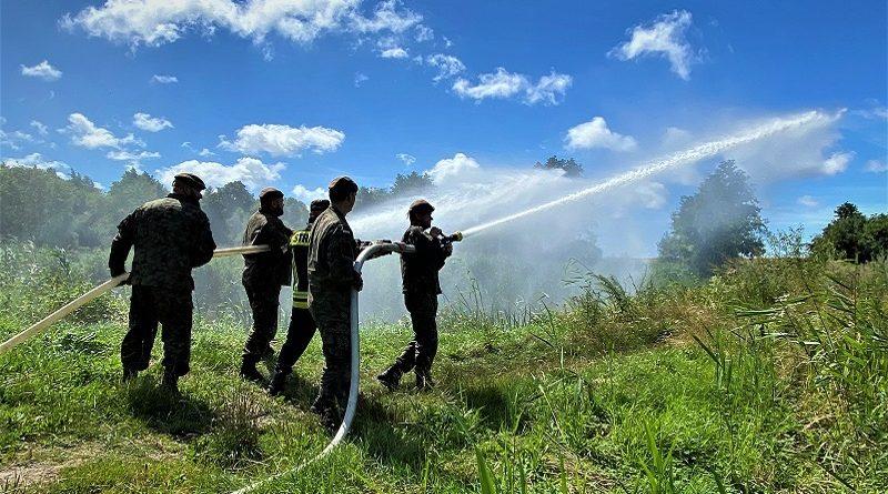 Terytorialsi ćwiczą ze Strażą Pożarną - fot. WOT(4)