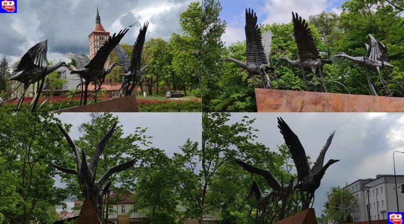 Warmińskie żurawie - Izydor Borys - 28.05.21- fot. Ku Prawdzie (1)