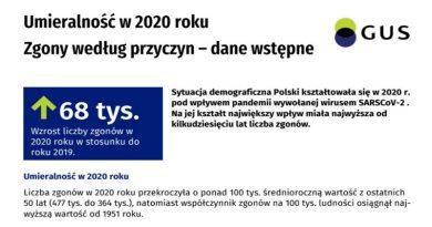 GUS - Umieralność w 2020 roku